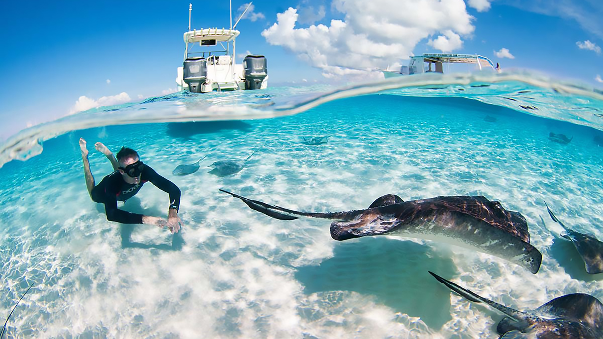 grand cayman photographer underwater stingray www.irenecorti.com